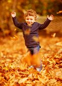 Image of cute little boy run with raised up hands in woods, adorable child enjoying autumnal nature,