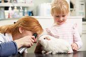 stock photo of vets surgery  - Female Veterinary Surgeon Examining Child - JPG