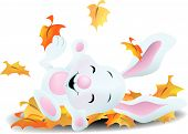 Bunny Playing In Autumn
