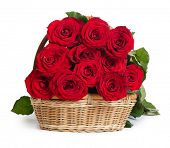 Bouquet of red roses isolated on white