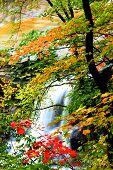 Brandywine Water Falls