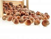 hazelnut filbert on wooden crate isolated on white background