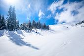 image of snowy hill  - Slope on the skiing resort  in Carpathians - JPG