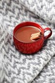 hot chocolate with cinnamon - sweet food /shallow DOFF/