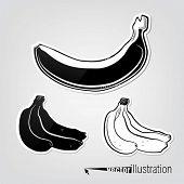 Conjunto de plátanos decorativo vector