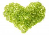 Corazón verde suave