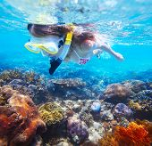 Young woman snorkeling over vivid coral reef in a tropical sea