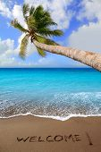 Brown beach sand with written word Welcome and tropical palm tree greeting