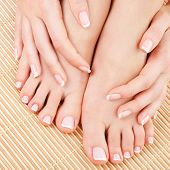 stock photo of fingers legs  - care for beautiful woman legs - JPG