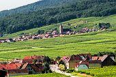 Itterswiller (Alsacia) - Panorama