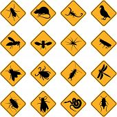picture of creepy crawlies  - a set of sixteen warning signs for rodents and insects - JPG