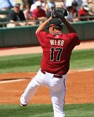 Arizona Diamondback Brandon Webb: Windup