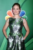 LOS ANGELES - JUL 27:  Erika Christensen at the NBC TCA Summer Press Tour 2013 at the Beverly Hilton