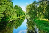 pic of brest  - Summer landscape with river Mukhavets - JPG