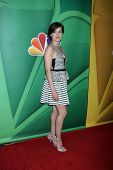 LOS ANGELES - JUL 27:  Megan Boone at the NBC TCA Summer Press Tour 2013 at the Beverly Hilton Hotel