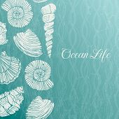 stock photo of organism  - Vector background with sea shells - JPG