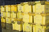 Yellow Packing Boxes Are Prepared For Wholesale Fish Market.