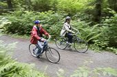 Elevated view of two people biking on forest road