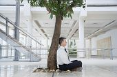 stock photo of crossed legs  - Full length side view of middle aged businessman meditating under tree in office - JPG