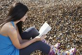 stock photo of herne bay beach  - Side view of young woman reading book while sitting on pebbles at beach - JPG