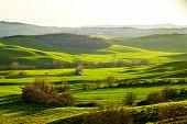 Countryside, San Quirico�?�?�?�´Orcia , Tuscany, Italy