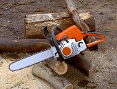 Chainsaw For Timber And Firewood