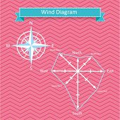 wind rose diagram and compass vector