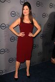 Mary McDonnell at the TNT 25th Anniversary Party, Beverly Hilton Hotel, Beverly Hills, CA 07-24-13