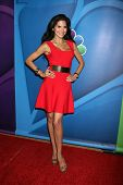 Joyce Giraud at the NBC Press Tour, Beverly Hilton, Beverly Hills, CA 07-27-13