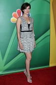 Megan Boone at the NBC Press Tour, Beverly Hilton, Beverly Hills, CA 07-27-13