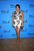 Sara Ramirez at the Disney/ABC Summer 2013 TCA Press Tour, Beverly Hilton, Beverly Hills, CA 08-04-13