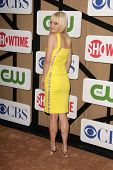 Anna Faris at the CBS, Showtime, CW 2013 TCA Summer Stars Party, Beverly Hilton Hotel, Beverly Hills