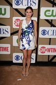 Rachel Bilson at the CBS, Showtime, CW 2013 TCA Summer Stars Party, Beverly Hilton Hotel, Beverly Hills, CA 07-29-13