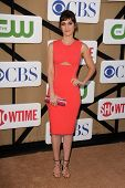 Lizzy Caplan at the CBS, Showtime, CW 2013 TCA Summer Stars Party, Beverly Hilton Hotel, Beverly Hil