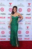 Maria Canals-Barrera at the 2013 NCLR ALMA Awards Arrivals, Pasadena Civic Auditorium, Pasadena, CA 09-27-13
