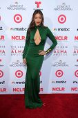Fernanda Romero at the 2013 NCLR ALMA Awards Arrivals, Pasadena Civic Auditorium, Pasadena, CA 09-27-13