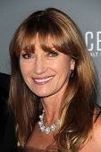 Jane Seymour at the Walt Disney Concert Hall 10th Anniversary Celebration, Walt Disney Concert Hall,