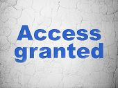 Privacy concept: Access Granted on wall background