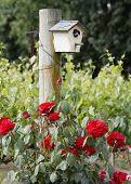 Sonoma Birdhouse