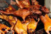 Roasted Guinea Pigs In South America