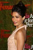 Freida Pinto at the Wallis Annenberg Center For The Performing Arts Inaugural Gala, Wallis Annenberg Center For The Performing Arts, Beverly Hills, CA 10-17-13