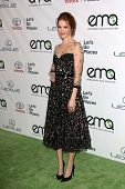 Darby Stanchfield at the 23rd Annual Environmental Media Awards, Warner Brothers Studios, Burbank, CA 10-19-13