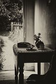 Vintage Antique Sepia victorian English Country Garden View From Indoors