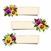 Three vector banners with pansy flowers. Eps-10.
