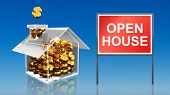 Investment Saving Money Open House Sky