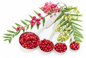 Pink Peppercorns, Fresh And Dry