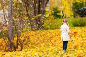 Adorable little girl with yellow maple leaves outdoors on beautiful autumn park