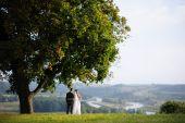 Bride And Groom Standing Under An Oak