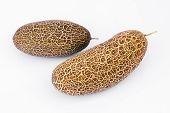 Sikkim Cucumber (cucumis Sativus Var. Sikkimensis )