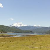 Nalcas National Park, Chile.